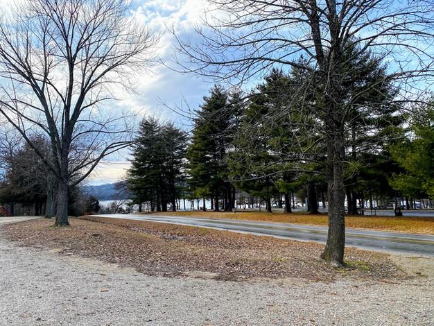 Fall Lake Views