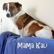 MAMA KALI OZZY 1 LITTER 5 17 2017 201705