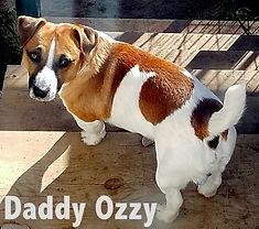 Daddy Ozzy no 1 20170603_074209(0).jpg