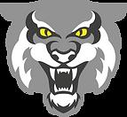 WCT-Logo-YellowEyes.png