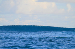 Мальдивская волна