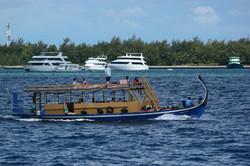 скопление яхт