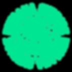HPP_Logo_New_Transparent.png