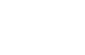 heart_pil.png