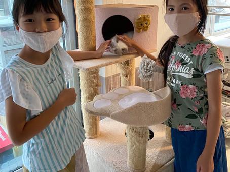 日本の子ども、幸福度が最低水準 ユニセフの38カ国調査⁉️
