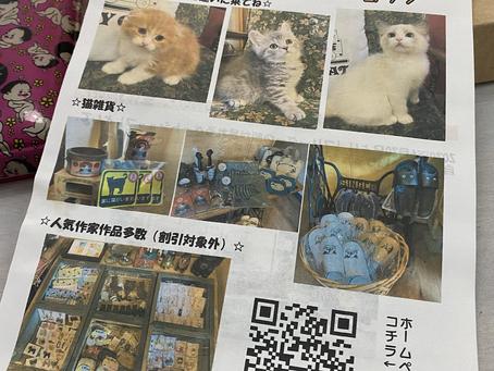 猫専門ペットショップCHUBBY CAT😺