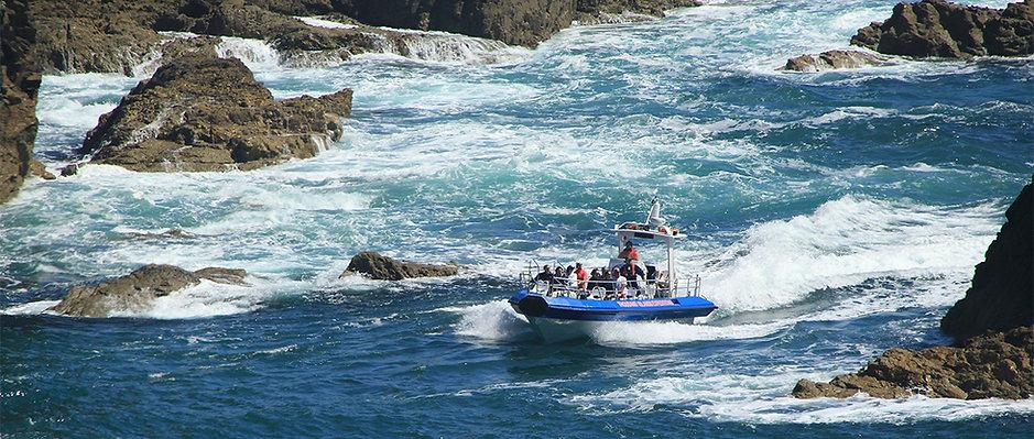 jet boat wildlife adventure.jpg