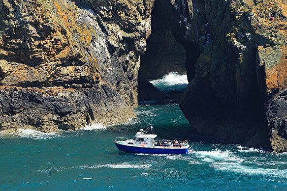 Boat trips around the Pembrokeshire Coas