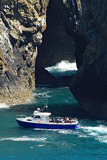 Boat trip around Ramsey Island RSPB Natu