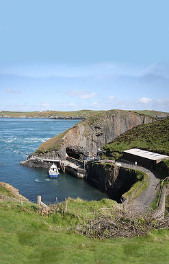 Ramsey Island ferry boat trips Ramsey so