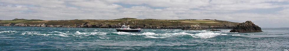 Ramsey Sound boat trip excursion.jpg