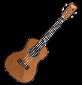 Ukulele--Musical-Instruments-New-Zealand