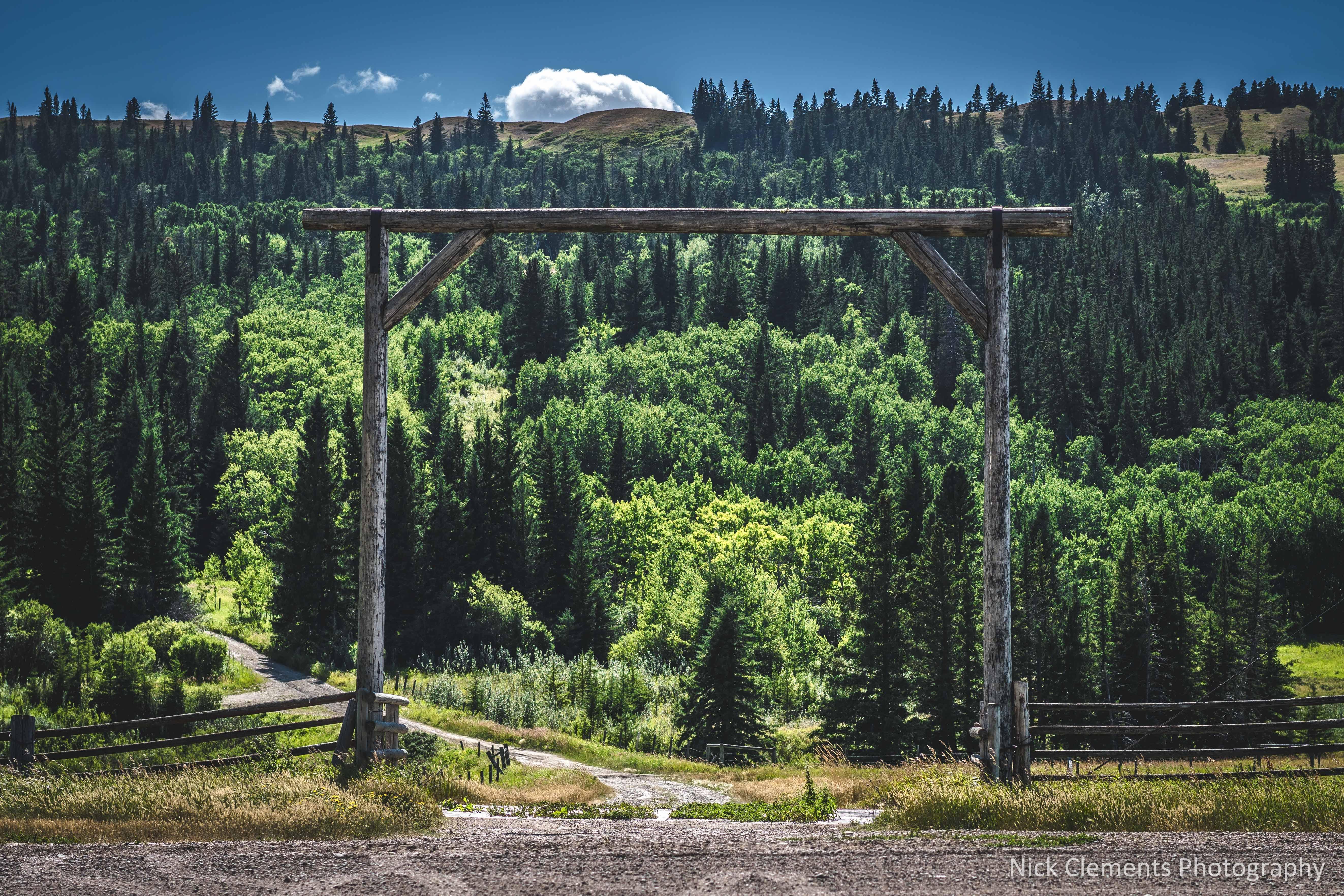 Cypress Hills Saskatchewan-1187