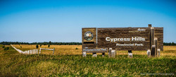Cypress Hills Saskatchewan-145