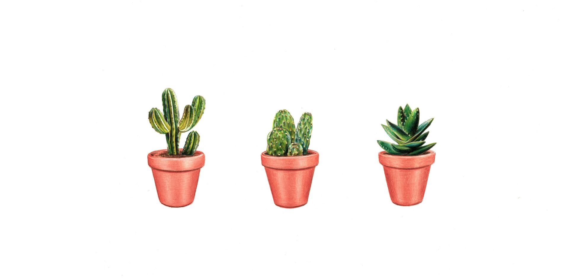 threecactus.jpg