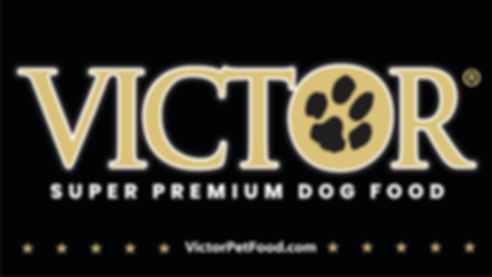 victor dogfoog 2018.jpg