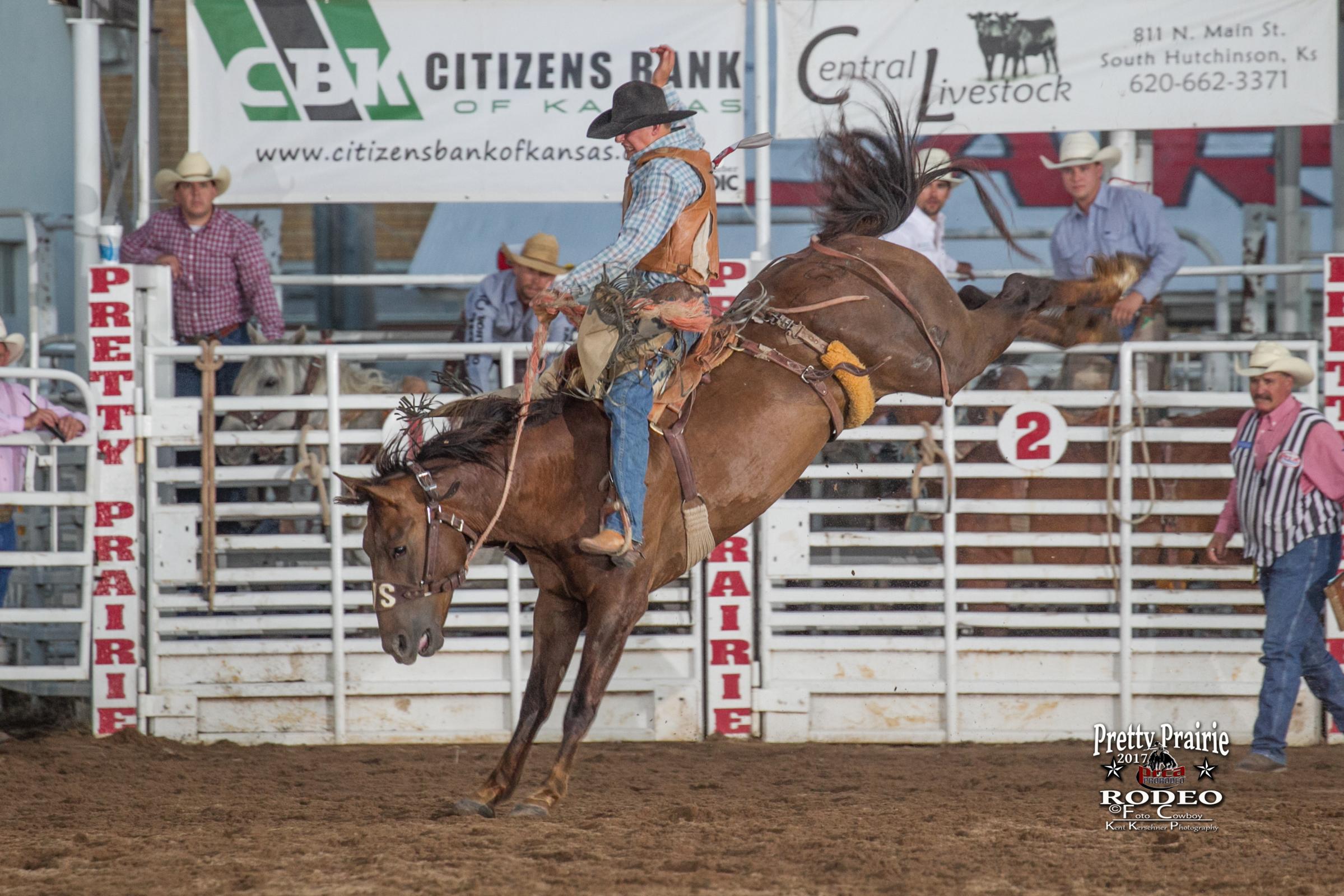 Saddle Bronc 2017 3