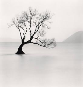 michael-kenna-fotografias-blanco-y-negro