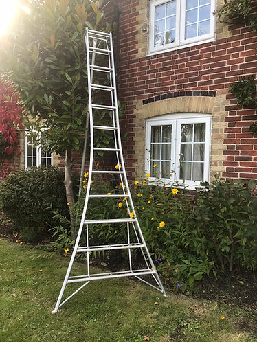 3.6m Aluminium-Tripod-Ladder 1-adj-leg-Gardening-Hedgin