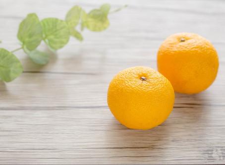 大阪『ありがとう市場』より季節を越える柚子の香り☆花嫁さん方式でアロマを楽しむ♪