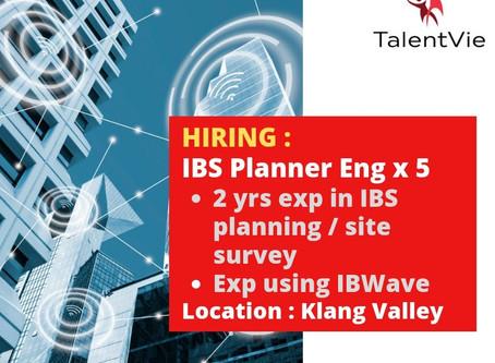IBS Planner Engineer x 5