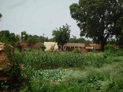 Ecole-Gal-Yaam-Aout-2011-15
