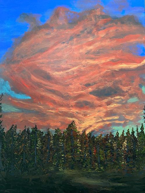 Prairie Sunset - Kim Morrall