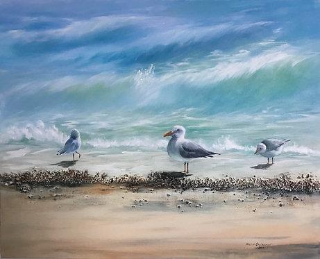 Seagulls - Helen Croissant