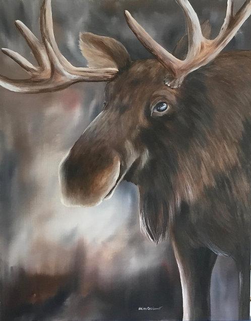 Smiling Moose - Helen Croissant