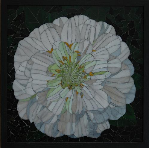 White Zinnia - Patti Cannon-Levesque