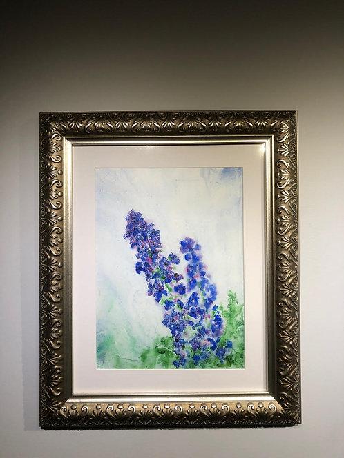 Blue Fantasy - Delphinium - Annette Henbid