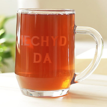 Pint / Beer Glass - Iechyd Da - Good Health x 6