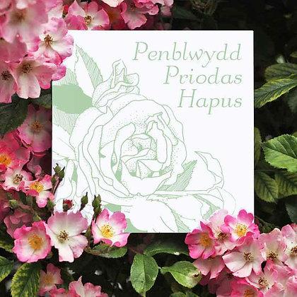 Card - Penblwydd Priodas Hapus - Happy Wedding Anniversary x 6