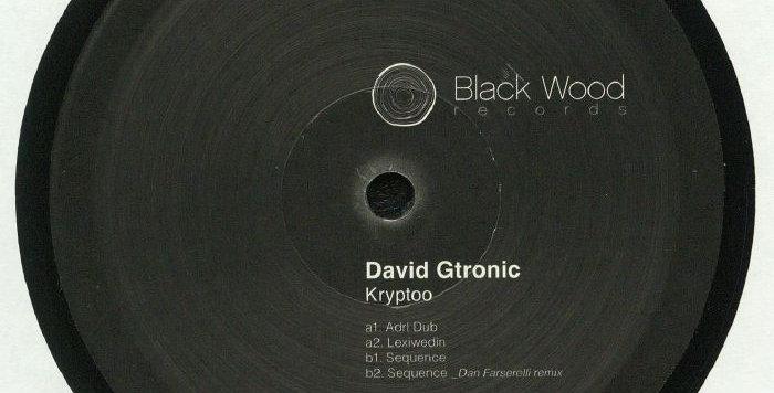 GTRONIC, David - Kryptoo (Microhouse)