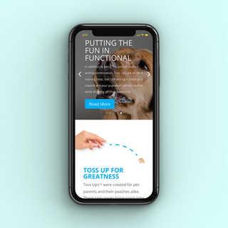 Website Design for Toss Ups