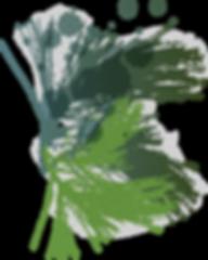 Testimoniale - Fratii Jderi Utopia Verde