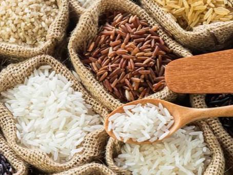 Le riz un féculent riche en glucides