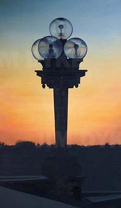 Print: Capitol Light oil