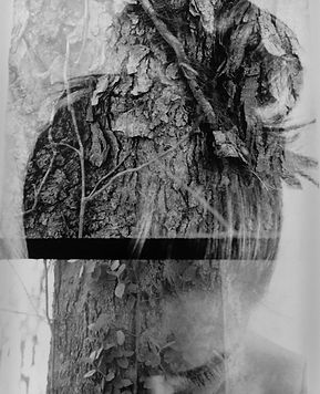 Double exposure, self portrait, nature
