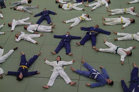 JudoStars.jpg