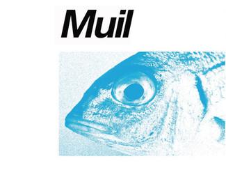 MUIL (concierto) 14/03/2020 - 20:00h