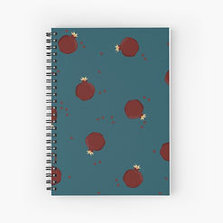 work-48033482-spiral-notebook.jpg