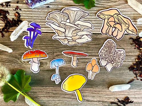 Fun-Guys Mushroom Large Sticker Pack