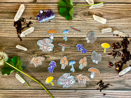 Fun-Guys Mushroom Small Sticker Pack