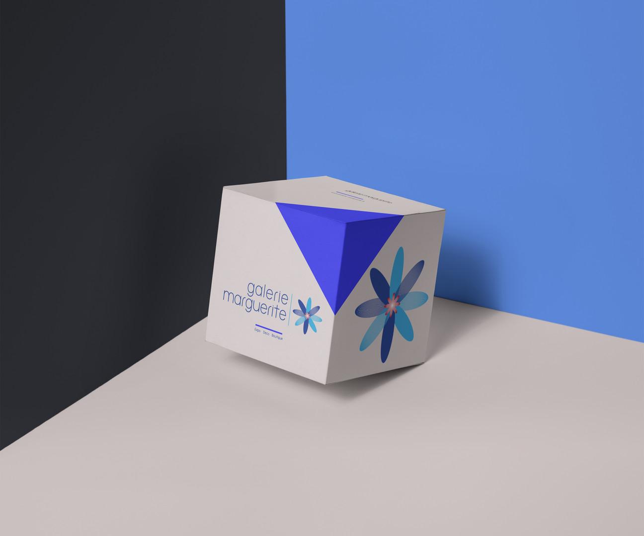 Logo definitif box.jpg