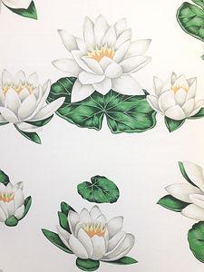 bottaro fior di loto (1).jpg