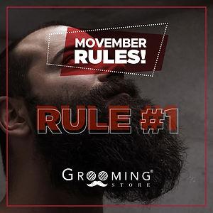Movember_RULE1.jpg