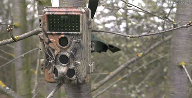 camera-chasse-12m-pixels.jpg