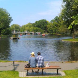 Public Gardens Today