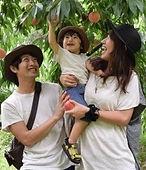 家族旅行 国内旅行 団体旅行 オリジナルツアー 大阪 神戸
